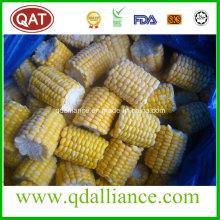 IQF Frozen Super Sweet Cut COB Corn