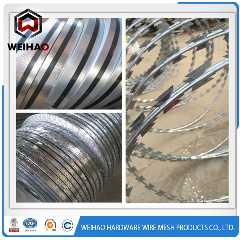concertina stainless barbed wire