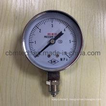Manufacturer Supply 6MPa Pressure Gauges for Sale