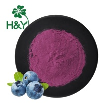 HIgh Quality blueberry powder halal blueberry extract powder