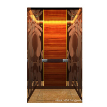 AC Drive type passenger elevators dumbwaiter lift with easy installation