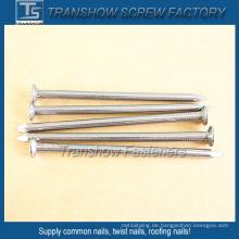 Galvanisierte Stahl glatte Schaft gemeinsame Nägel