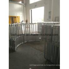Alimentador de vaca galvanizado sumergido caliente con la parte inferior de la falda Fábrica de China directamente suministrada