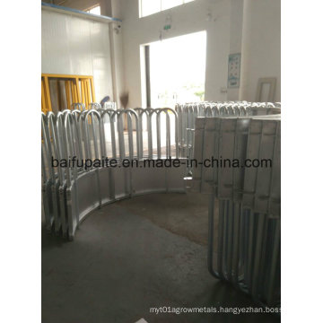 Hot Dipped Galvanised Cow Feeder with Skirt Bottom China Factory Directly Supplied