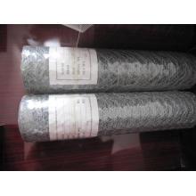 Electro Galvanized Hexagonal Wire Mesh in Best Price