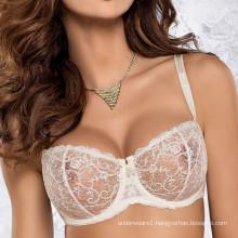 2017 Wholesale OEM underwear women desi girl hot image sexy bra panty set images Push up Bra