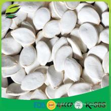 Venta al por mayor semillas blancas de la calabaza para la venta