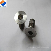 hot selling titanium countersunk screw