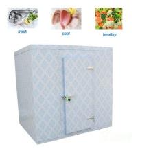 Полноповоротная дверная петля, используемая в холодной комнате. Морозильник