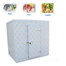 Cold Room for Vegetable/Fruit/Fish/Cold Storage Room