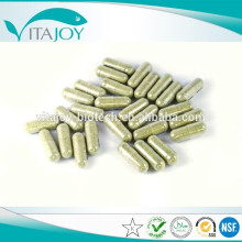 OEM high quality Marshmallow Root powder capsule