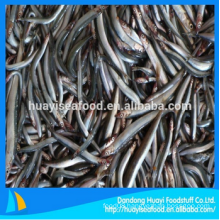 frozen new perfect sand lance for sale