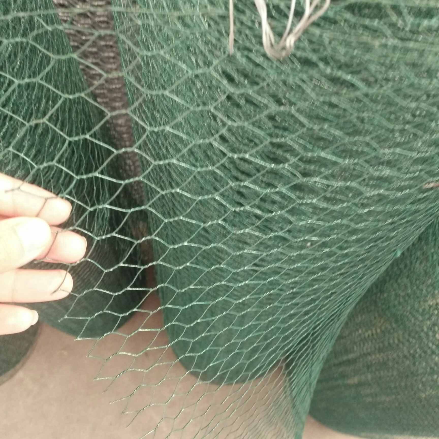 3 4 Inch Pvc Coated Hole Chicken Wire Mesh China Manufacturer