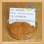 Bulk goji berries powder/goji berry extract 10:1