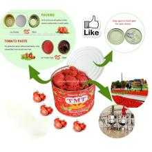 pasta de tomate de Best packaging materials