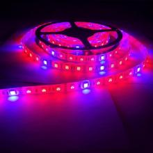Planta Crescer luzes Full Spectrum LED Strip