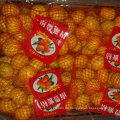 Gute Qualität von frischem süßem Baby-Mandarine