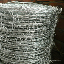 Galvanized Barbed Wire for Fence Wire