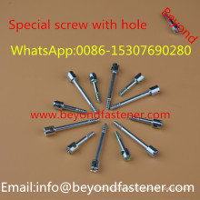 Screw Bolts Special Screw Step Bolts