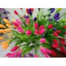 Die Blume mit warmer Innendekoration Spezielle Garantie Qualität