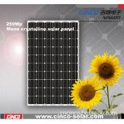 Solar Cell, 250W Solar Cell, 250W PV Cell (CNCB250W)
