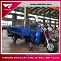 200cc gute Quanlity Big Power Motor Dreirad aus China