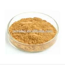 China Lieferant zertifiziert reinen Astragalus Wurzelextrakt Organische Astragalus Wurzelextrakt, Astragalus Extrakt