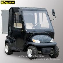 EXCAR 2 asientos carrito de golf eléctrico con puertas hotel utilitario coche con errores