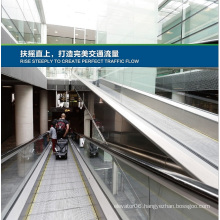 Aksen Moving Walks, Escalator in Door Type