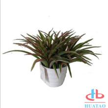 New Design Artificial Plants In Mini Planter Pots