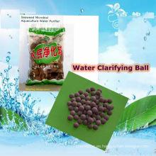 Algas Bio-Bacteriana Agua Purificadora Ball