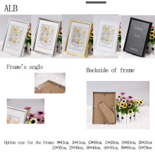 Aluminum Frame Photo Frame(Alb-5070 B