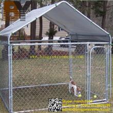 Cão canil pet casa animal gaiola