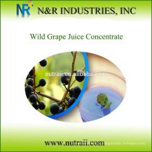 Концентрат дикого виноградного сока
