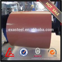 Plaque / bobine en acier revêtue de couleur standard RAL