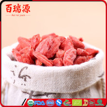 Dried Fruit Goji berry imports from ningxia