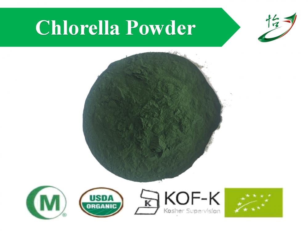 Chlorrella Powder