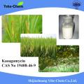 Biological Fungicide Kasugamycin 70%TC 2%SL 10%WP 6%WP