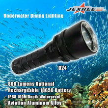 100lm imperméable à l'eau portable LED Torch Diving Lighting