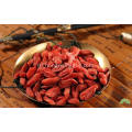 Bulk conventional goji berries 280 not stick goji