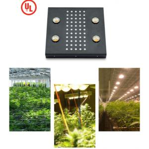 NOAH 4 Plus Led Grow Light