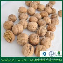 Orgânico verde cheio de nogueira de alta qualidade de alta proteína com casca