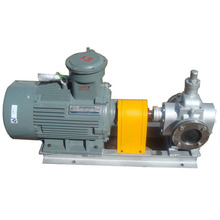 Best Quality with Ycb Motor Gear Pump