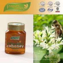 Miel de miel de tilo pura miel cruda natural OEM