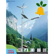 Good Reputation Wind Solar Hybrid LED Street Light (BDTYN1)