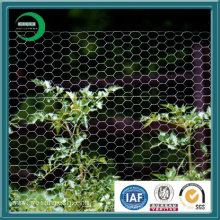 Hexagonal Wire Mesh (XY-23F)