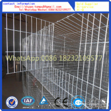 Lapin Cage / Cages Volaille / Cages Layer Vente chaude
