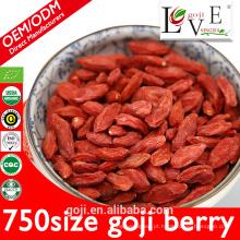 Fazendas profissionais e vendas de fábrica 100% pure goji berry