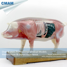 A07 (12006) modelos de acupuntura anatômica de porco do veterinário plástico 12006