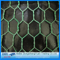 Chicken Coop Hexagonal Wire Mesh